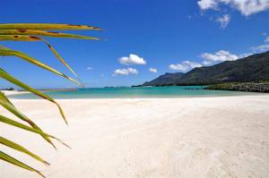 A few facts about Seychelles and what it has to offer
